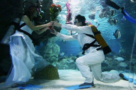 Underwater Wedding Theme